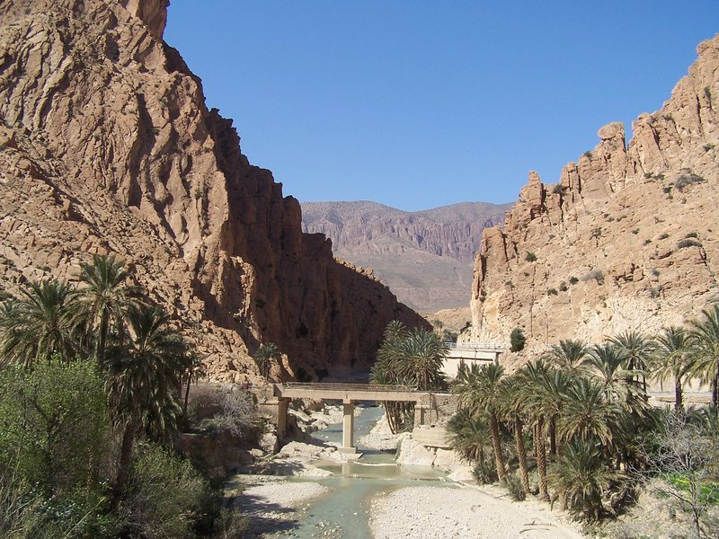 a view of throats of oasis of el kentra