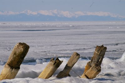 Pylons at Lake Baikal