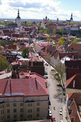 Our street - Tallinn