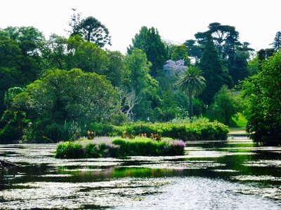 Ornamental Lake at Royal Botanc Gardens in Melbourne.