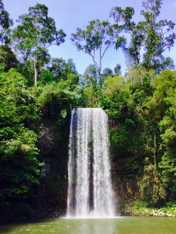 "This is the Millaa Millaa Waterfall, a part of what they call the ""waterfall circuit."""