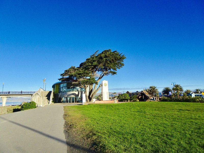 After going through the Christchurch-Lyttelton Tunnel,  we followed the coastline to New Brighton. This is a coastal suburb about five miles east of the Christchurch CBD. This picture shows the beginning of New Brighton Pier that stretches 1000 ft. out into the Pegasus Bay. Also pictured is the the library and clock tower.