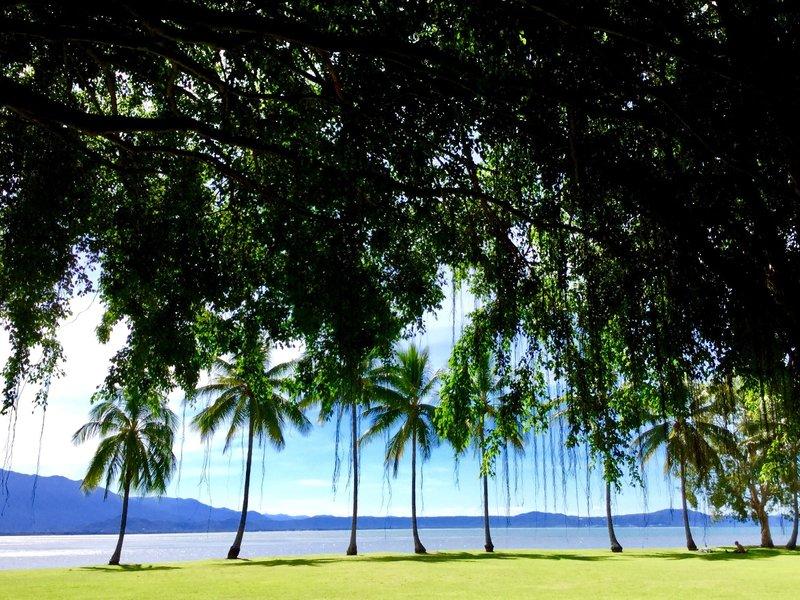 Anzac Park at Port Douglas