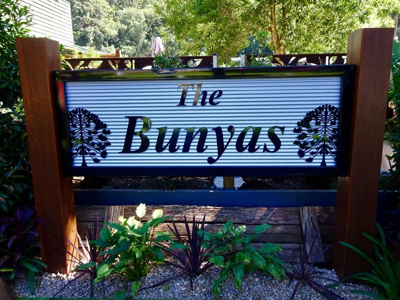 The Bunya National Park in QLD.