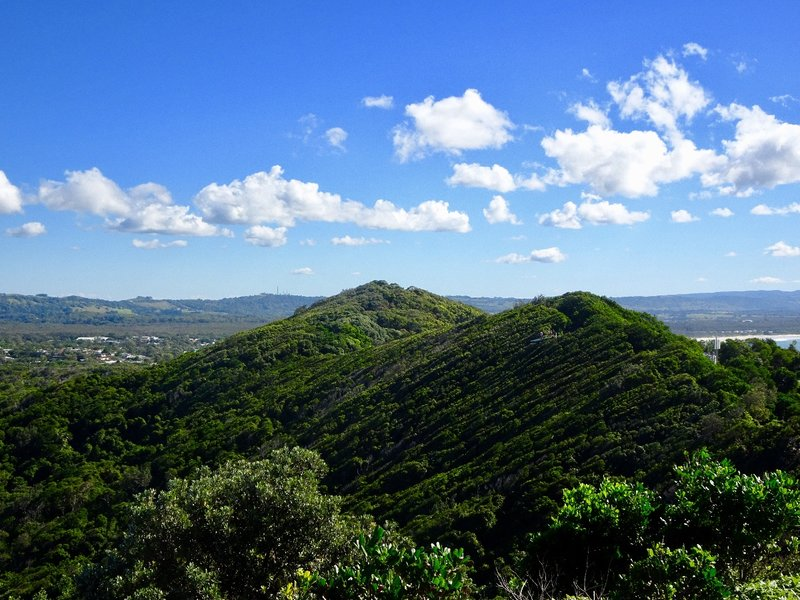 We walked through these mountains on our way back from the Cape Byron Lighthouse.