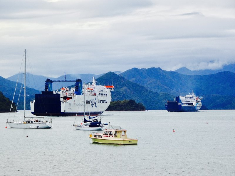 The two ferries pictured here were traveling through the Queen Charlotte Sound and then across the Cook Strait to the North Island.