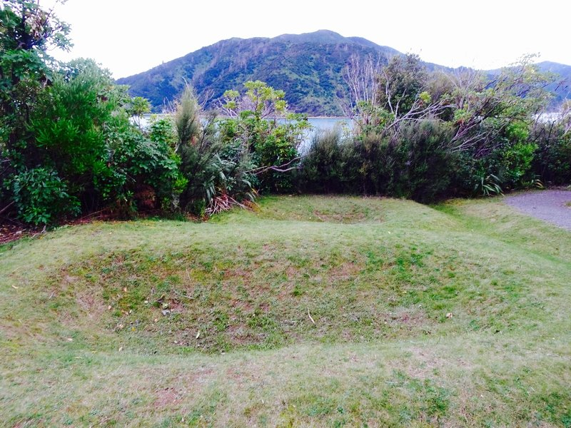 We went to Karaka Point; it is a narrow headland that juts out into the Queen Charlotte Sound. A large pā (fort) was built here for defense purposes by a 16th century tribe (Ngāti Mamoe). The ditches seen here were used for storage;  they are all that remains of this pā at Karaka Point.