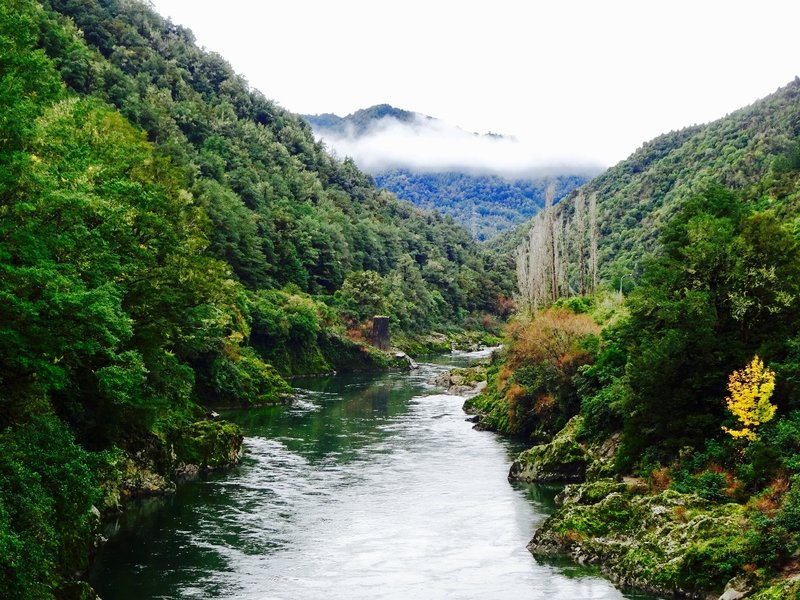 The Buller River is one of the longest rivers in NZ. We followed it through the Buller Gorge to where it flows into the Tasman Sea at Westport.