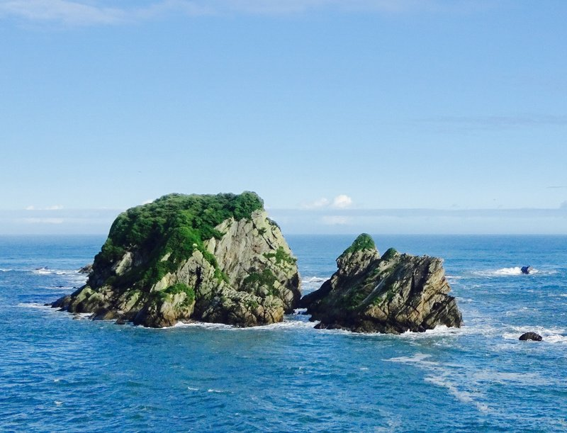 Wall Island at Cape Foulwind is free from the predators, and a safe place for birds to breed.