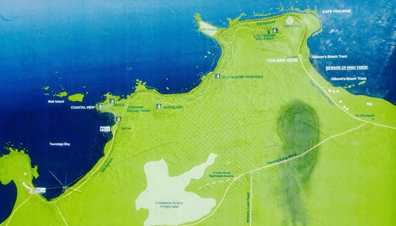 The map of our walk at Cape Foulwind.