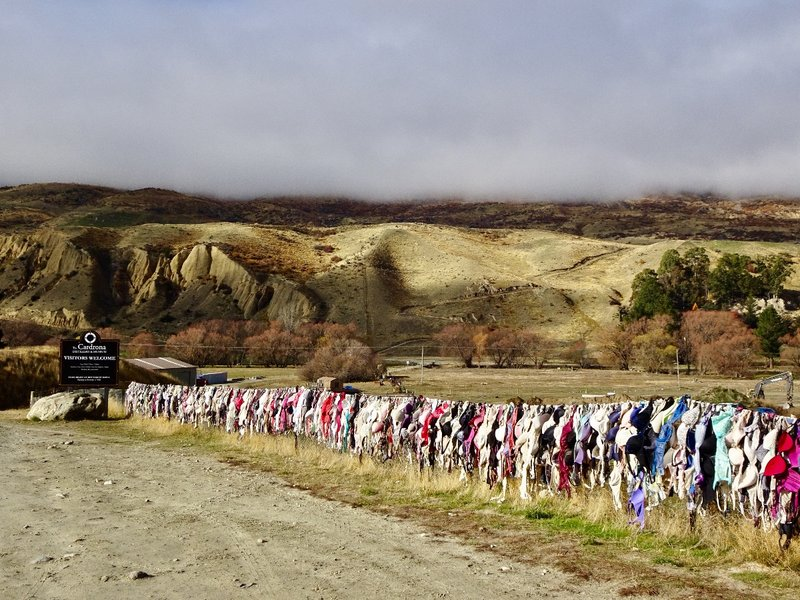 The Cardrona bra fence is controversial, and at times the bras are removed but more eventually show up. The farmer who owns the fence doesn't mind the bras being there, but some of the locals think they are an eyesore.