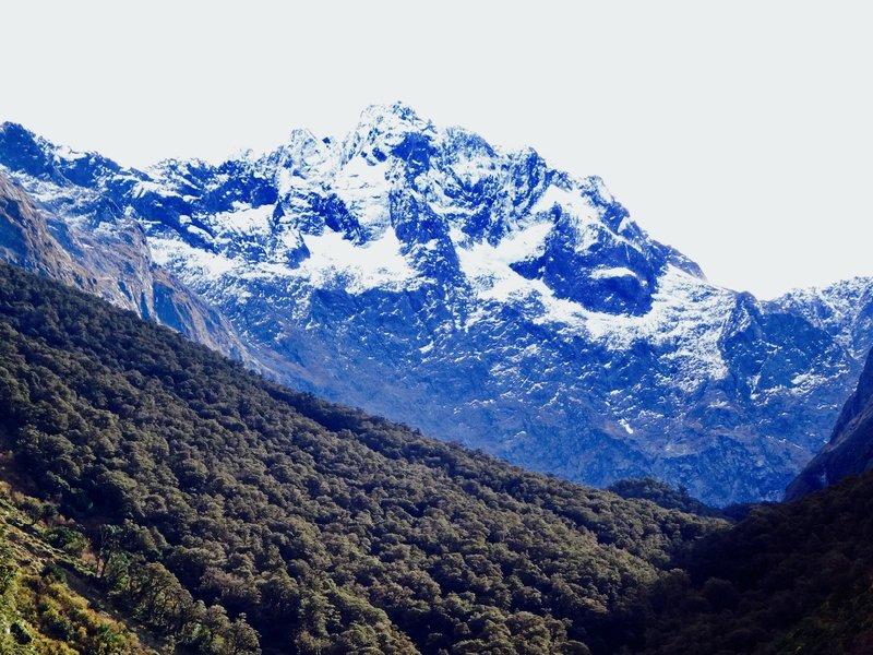 Mt Tutuko is the highest peak in the Fiordland NP.