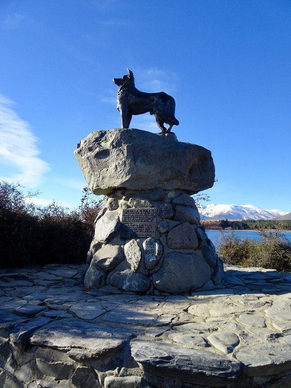 """This bronze sheepdog statue overlooks Lake Tekapo. Dedicated to all sheepdogs of the Mackenzie region, the tribute on the plaque partially reads """"without the help of which the grazing of this mountain country would be impossible."""""""
