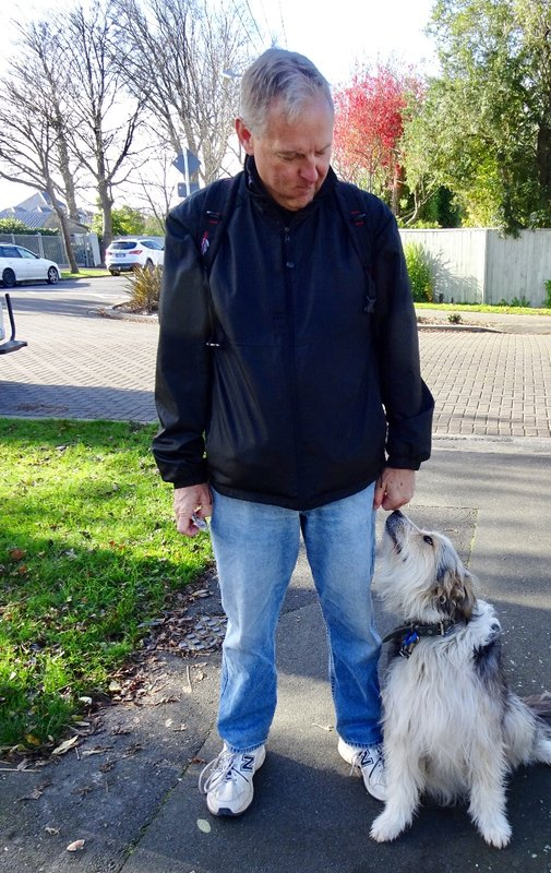 """We met """"Lass"""" when leaving the Saturday market. She is mostly a bearded collie, but I can't remember what the other breed mentioned was. We fell in love with this Scottish gal."""
