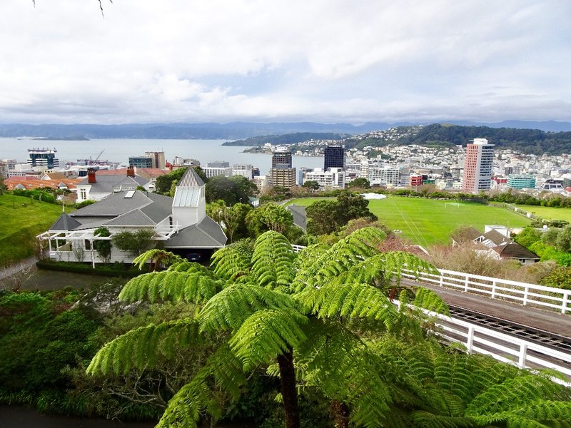 This view from the Botanic Garden, is of the cable car track and the Wellington CBD/Harbor. In the distance, is the Hutt Valley; this is where we stayed while in the area.