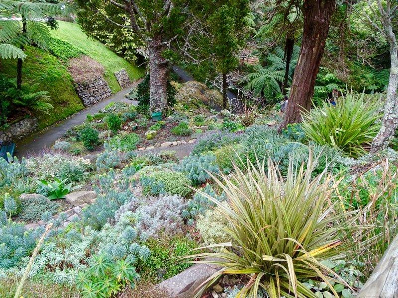 A winter view of the Wellington Botanic Garden.