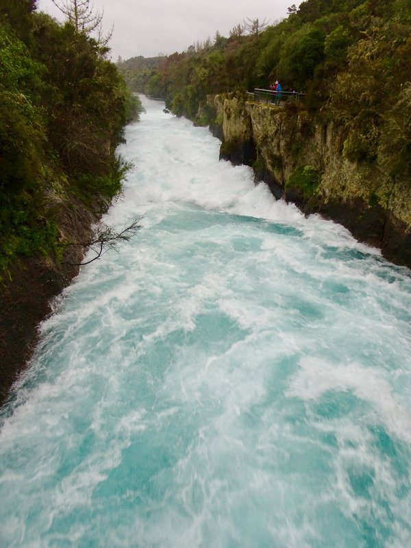 The Waikato River drains Lake Taupo;  it then narrows from approximately 300 ft. to 50 ft. before entering  this shallow ravine of volcanic rock.