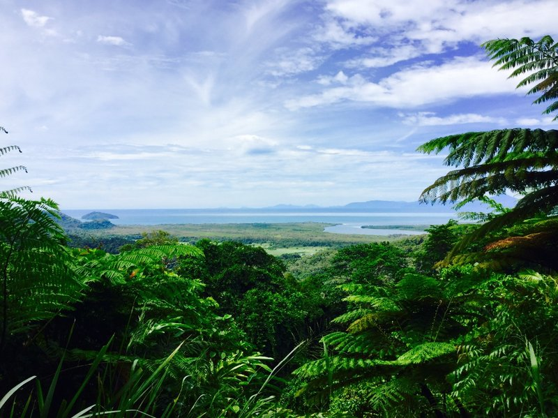 Our first stop in the Daintree Rainforest was at the Mount Alexandra Lookout. From here we could see the mouth of the Daintree River, and some of small islands that sit out in the Coral Sea.