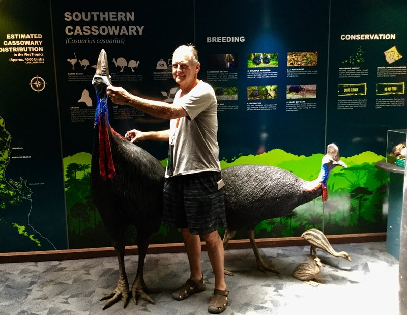 Greg is harassing the female cassowary. As you can tell, she is larger than the male, and her life is much less complicated.