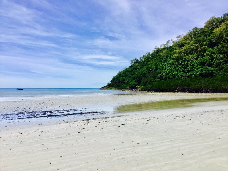 While standing on Cape Tribulation Beach, we were looking out toward the Great Barrier Reef. The Endeavor Reef section is a little north of here. This is also a good example of where the reef and rainforest meet.