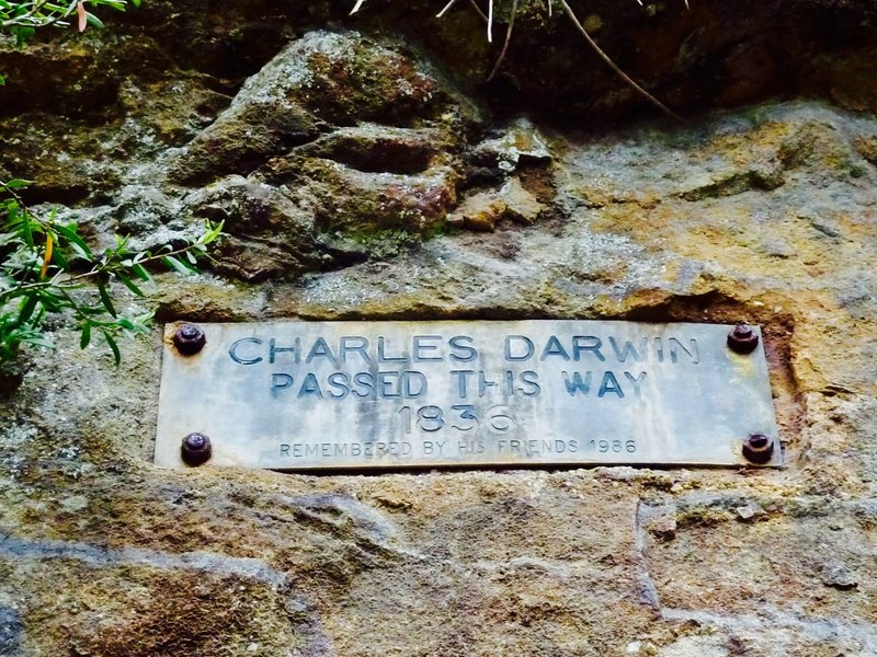 Charles Darwin stayed in Wentworth Falls in 1836. The Charles Darwin Walk that we took to the actual falls, supposedly follows the route he took.