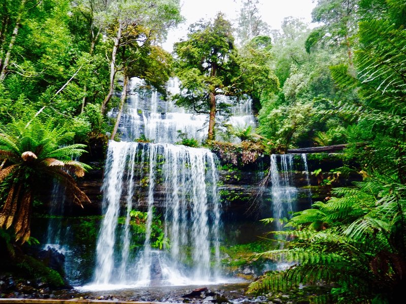 Russell Falls is considered to be the number one attraction at Mount Fields NP.