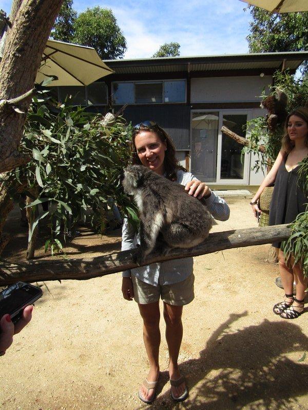 Jill petting a koala