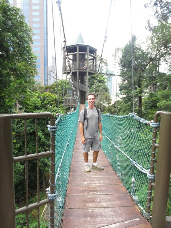 Canopy walk in the heart of the city