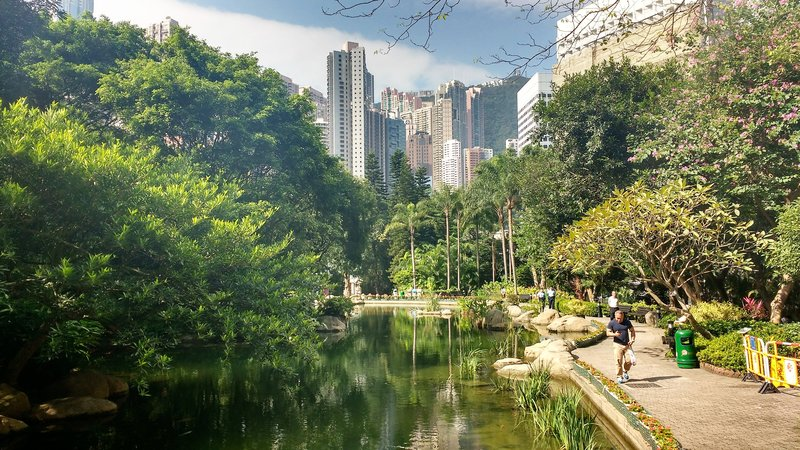 A pond in Hong Kong Park