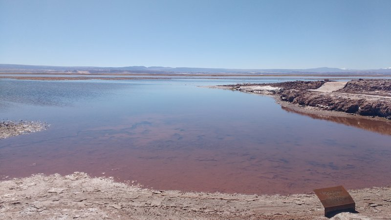 Another lake surrounded by salt
