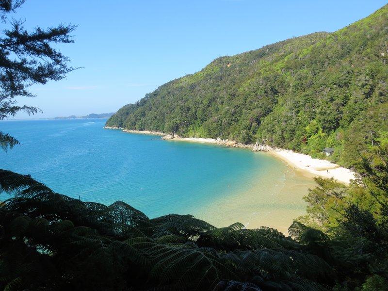 Beautiful Tasman Sea