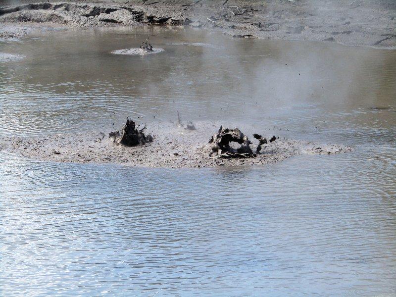 Boiling mud pools in Rotorua