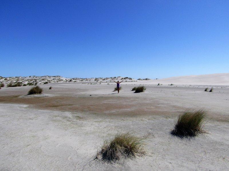 Desserted beach on Farewell Spit
