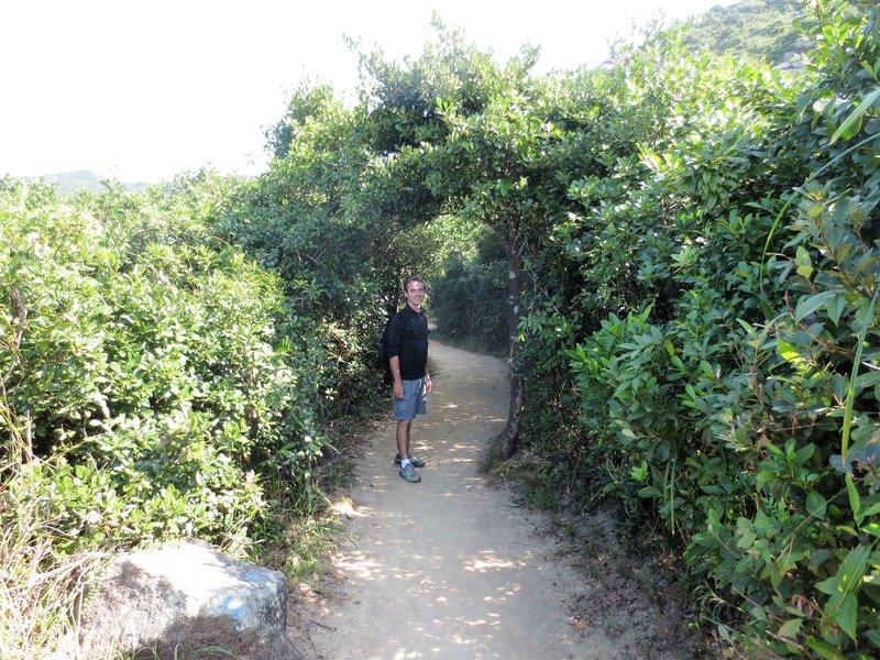 Dragon back trail