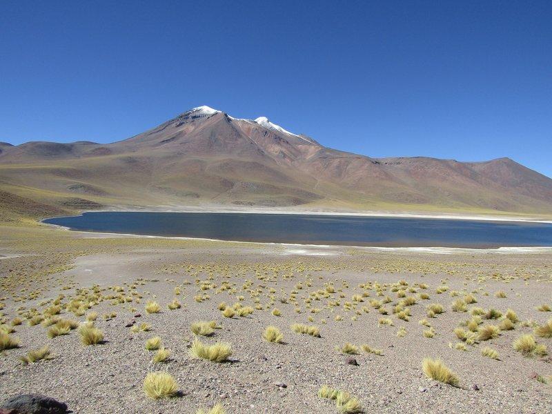 Laguna Miscanti (2)