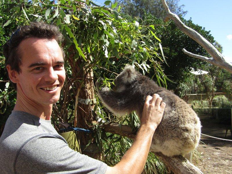 Loic petty a koala