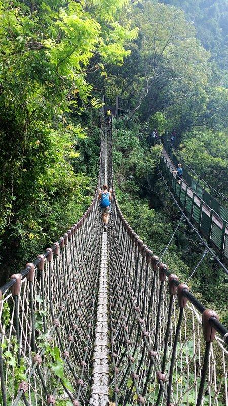 Narrow rope bridge