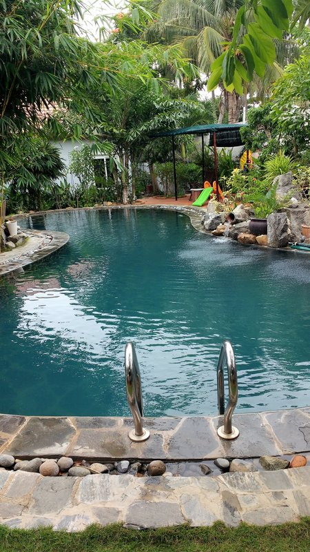 Our pool and garden