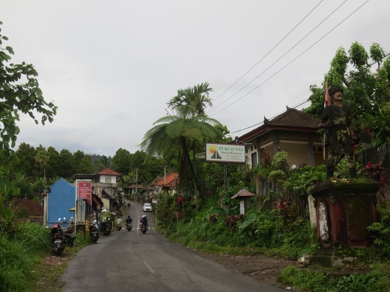 The tiny town of Munduk had 2 restaurants and lost of guesthouses