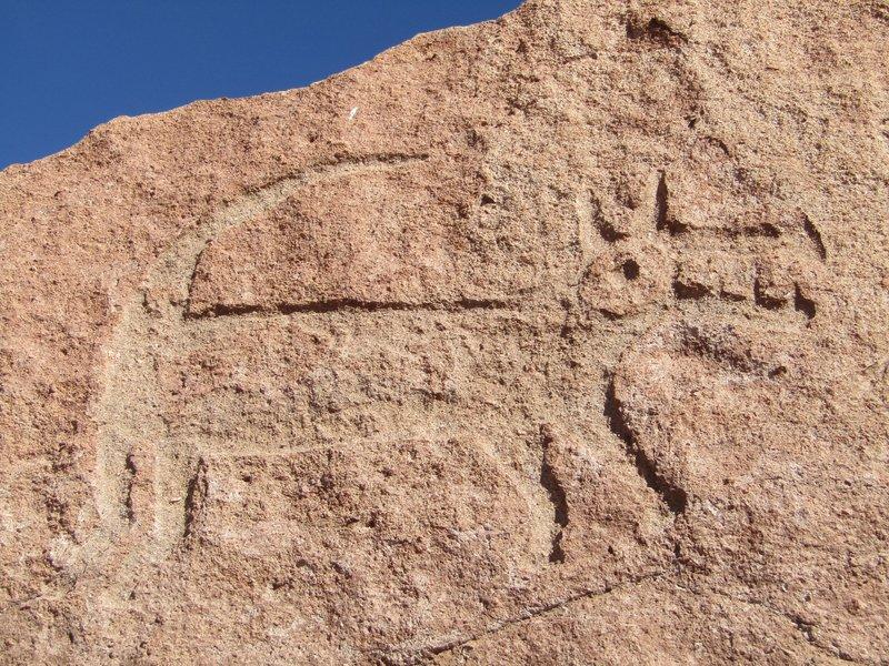 petryglyphs of a dog