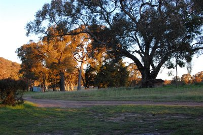 Sunset in Rylstone