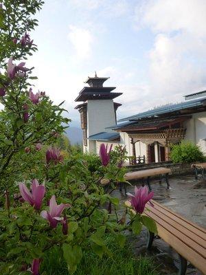 Bhutan2014_022.jpg