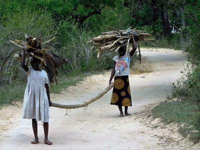 Women carrying firewood