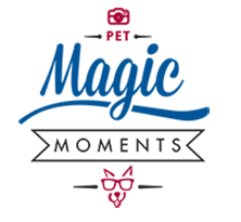 logo-magic-moments
