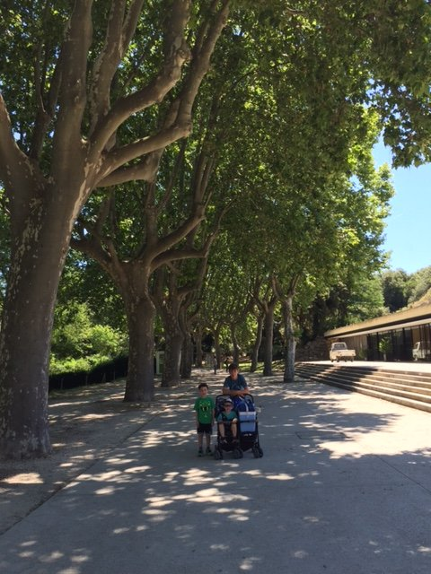 Pont du Gard with Blake and Élias