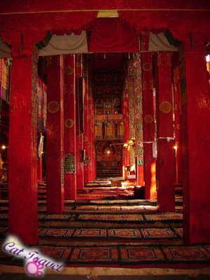 Shangri-la tour--Inside the Tibetan Monastery