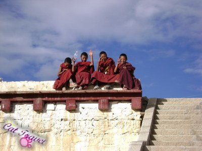 Shangri-la tour--Changqingchunke&#39;er Monastery 3