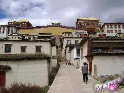 Shangri-la tour--Songzanlin Monastery
