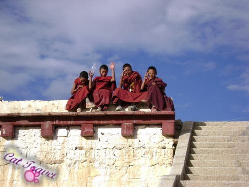 Shangri-la tour--Changqingchunke'er Monastery 3