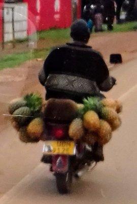 Pineapples anyone?